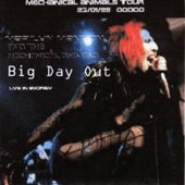 Big Day Out - Live in Sydney cover